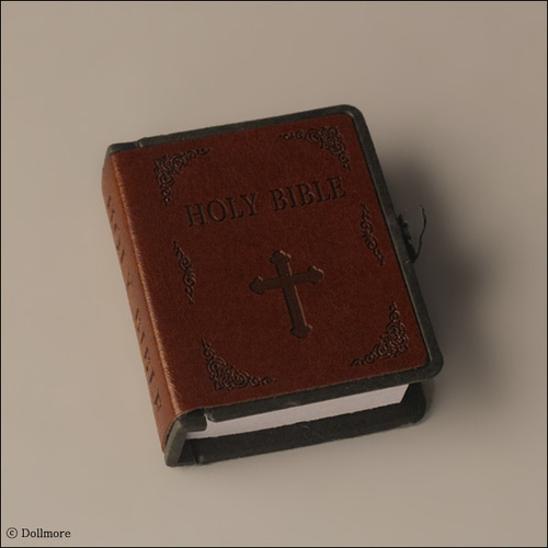 Precious Bible (Brown)