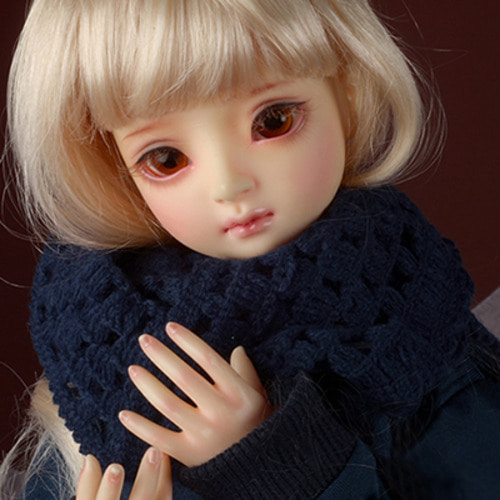 Model & MSD - Drizzly Knit Muffler (D.Blue)