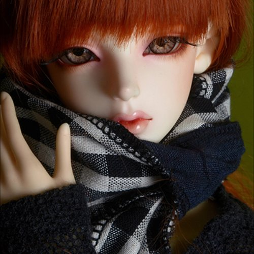 Model & MSD - Check Woollen Muffler (K - Navy)