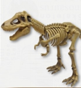 [POSE SKELETON Dinosaur-01] 티라노 사우르스