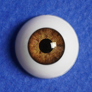 [12mm] Optical Half Round Acrylic Eyes (MA09)