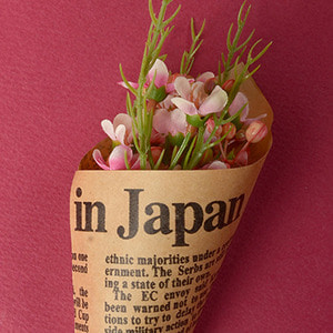 Middle Waxflower Bouquet (Pink)
