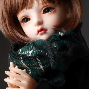 Model & MSD - Chrono Check Woollen Muffler (Green)