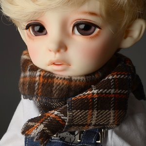 Model & MSD - Chrono Check Woollen Muffler (Brown)